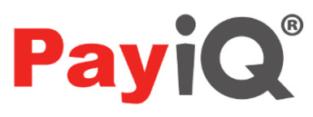 PayiQ logo